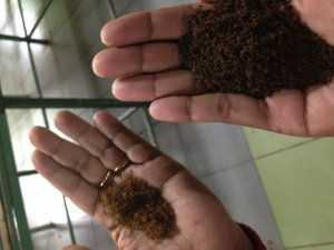From deep green tea leaves to coppery hues and dark rich browns of Ceylon Black tea thats been fermented