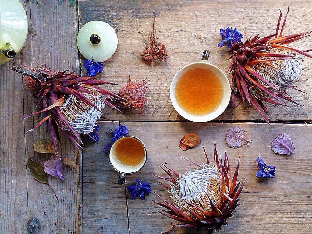 Natural and inspired by nature, herbal teas for all seasons. Cold infusions to hot teas